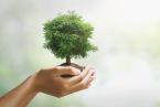 svetovni-dan-varstva-okolja.jpg